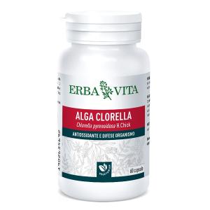 Alga clorella 60 capsule