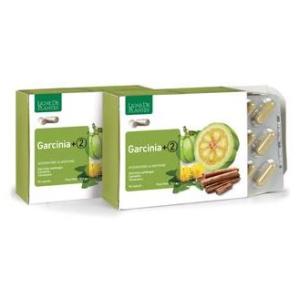 Garcinia +2 90 capsule