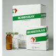 Trova Offerte di bicarbossilasi 1fl+1 flaconi 10ml e compra online